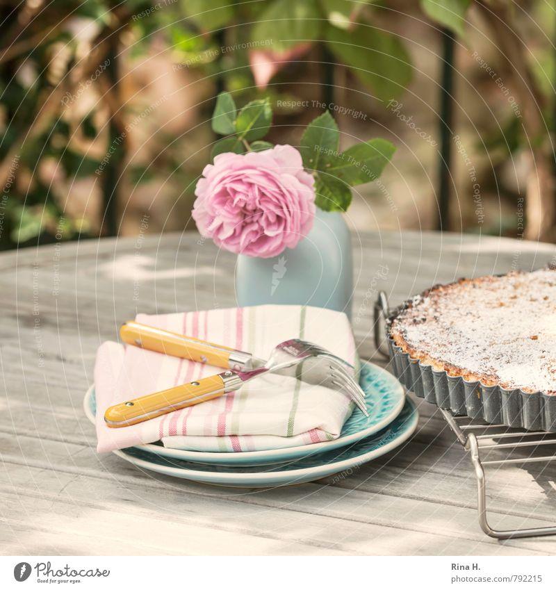 Torta di riso II Erholung Garten Lifestyle authentisch genießen Blühend süß Rose lecker Geschirr Kuchen Teller Terrasse Gitter Dessert Vase