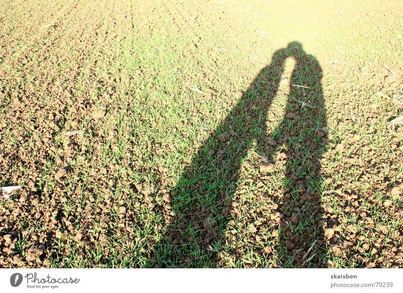 outdoor liebe Frau Mensch Mann Hand Freude Erwachsene Liebe Herbst Gefühle Glück Paar Freundschaft 2 braun Feld Zusammensein