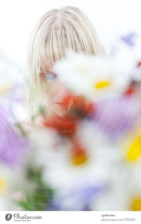 Frühjahrsmüdigkeit Mensch Natur Jugendliche Pflanze schön Erholung Junge Frau Blume ruhig 18-30 Jahre Erwachsene Leben Gefühle Frühling Gesundheit träumen