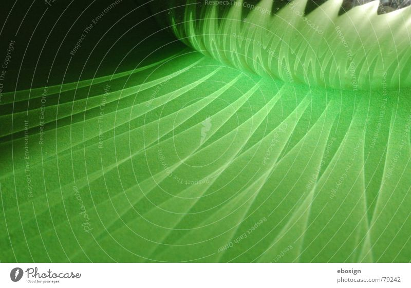 grüner glanz Muster Zauberei u. Magie Reflexion & Spiegelung glänzend Licht dunkel Detailaufnahme Farbe Strukturen & Formen Beleuchtung Schatten hell