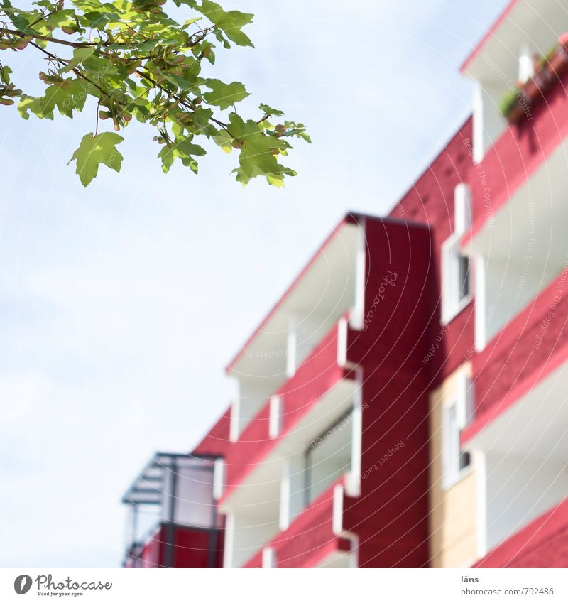 Blatt grün l Platte rot Himmel Stadt Baum Haus Architektur Gebäude Zusammensein Wohnung Häusliches Leben Hochhaus Beton einfach Freundlichkeit Schutz