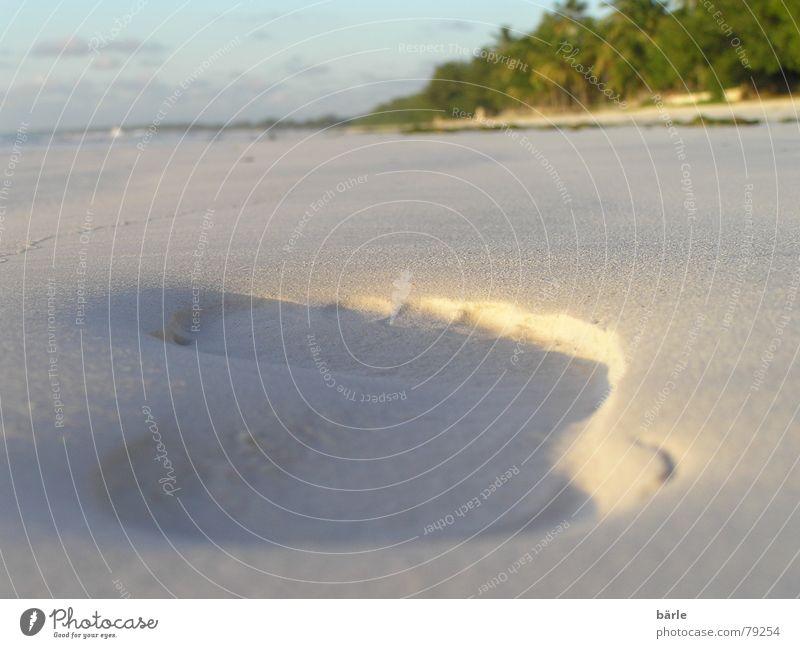 Schritt für Schritt Meer Sommer Strand Ferien & Urlaub & Reisen Fuß Sand Küste gehen Bodenbelag Afrika Freizeit & Hobby Palme Fußspur Furche Tansania Sandstrand