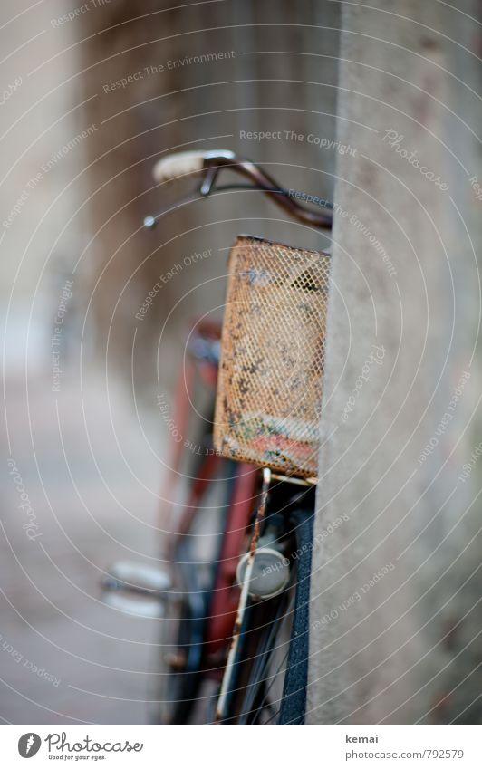 Rad Freizeit & Hobby Fahrrad Fahrradkorb Drahtkorb Korb Fahrradlenker alt dreckig Rost Beton angelehnt Farbfoto Gedeckte Farben Außenaufnahme Nahaufnahme