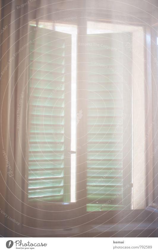 Gute Nacht Häusliches Leben Wohnung Innenarchitektur Raum Gardine Fensterladen hell grün weiß sanft geschlossen Morgendämmerung Farbfoto Gedeckte Farben