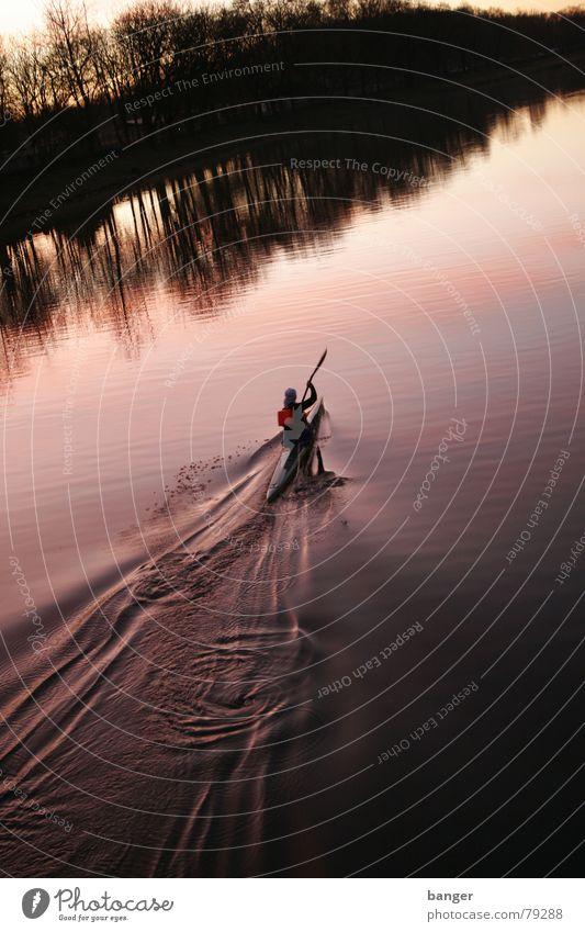 bergauf Kanu Morgen Sonnenaufgang Paddel Geschwindigkeit Wasserfahrzeug Baum violett Winter Sport Spielen begauf Kraft Schlag Brücke Fluss Wassertropfen Natur