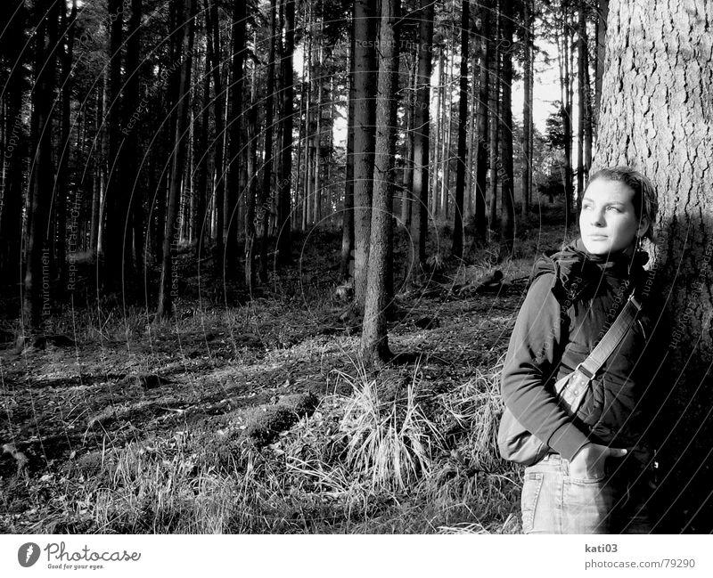 Schau....ne Sonne! anlehnen Wald Baum Pflanze Herbst kalt Einsamkeit Sehnsucht träumen stehen Licht Ferne Junge Frau Schwarzweißfoto hell Beleuchtung Blick