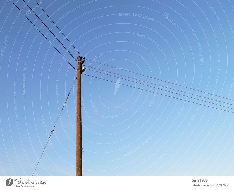Lange Leitung Himmel blau Holz Elektrizität Kommunizieren Kabel Schönes Wetter Strommast Leitung Blauer Himmel Goldener Schnitt