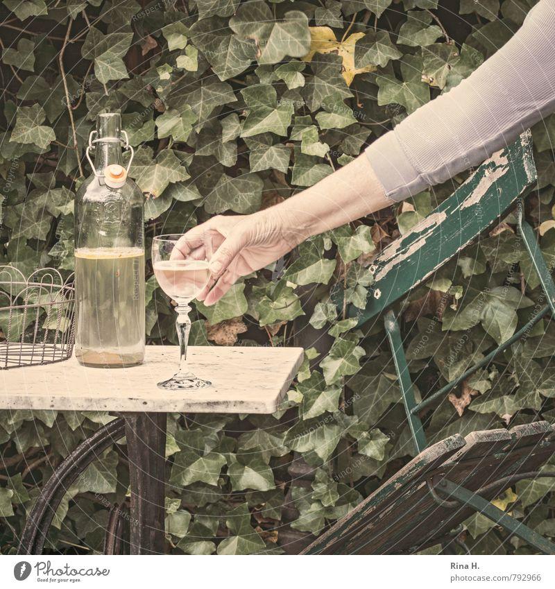 Genug Mensch grün Einsamkeit Hand Erwachsene Garten Glas Arme 45-60 Jahre Hoffnung T-Shirt verfallen Ende Quadrat Flasche Stillleben