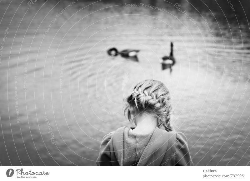 das kleine mädchen am see Mensch Kind Natur schön Einsamkeit ruhig Mädchen Tier Umwelt Traurigkeit feminin natürlich See träumen Kindheit blond