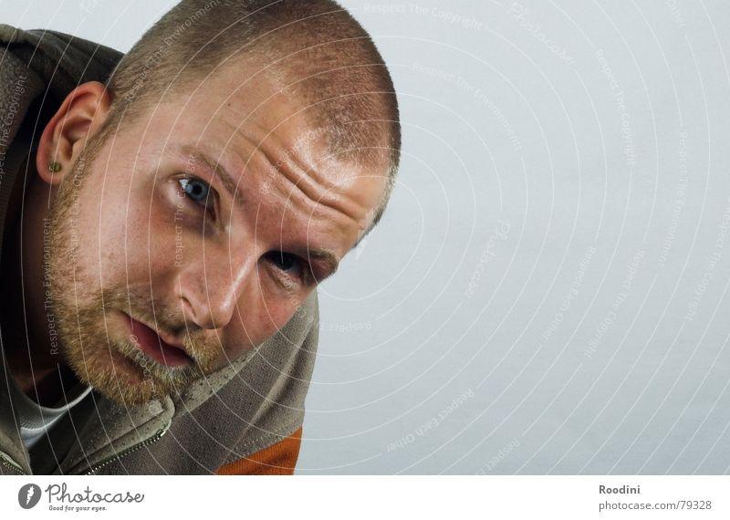 Hallo Mensch Mann Gesicht Auge Haare & Frisuren Mund Perspektive beobachten Bart Typ Meinung Fragen Porträt Junger Mann