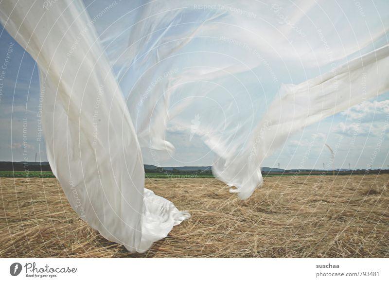 vorhang auf Umwelt Natur Landschaft Luft Himmel Horizont Sommer Schönes Wetter Feld Landwirtschaft Plastikplane Wind flattern Farbfoto Gedeckte Farben