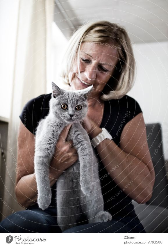 erwischt! Katze Mensch Frau ruhig Erwachsene Tierjunges Leben feminin grau klein Glück Freundschaft Zusammensein elegant Zufriedenheit blond