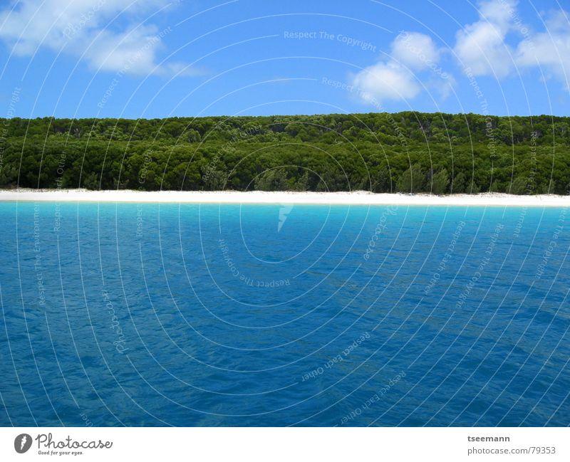 Whitehaven Beach Himmel blau Wasser weiß Baum Ferien & Urlaub & Reisen Meer Strand Wolken ruhig Wald Küste Sand See träumen Segeln