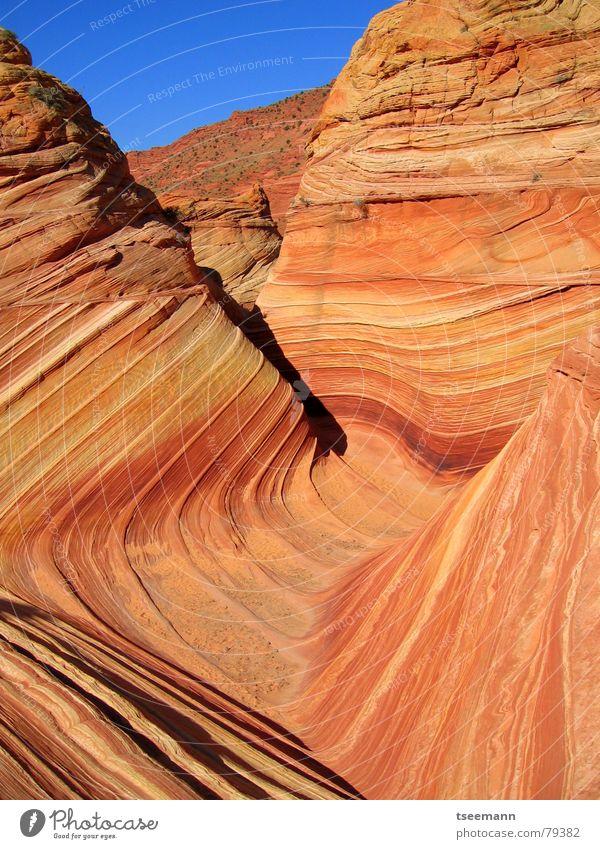 The Wave III Schlucht Sandstein Wellen Licht gelb rot USA Berge u. Gebirge Stein orange Marmor Strukturen & Formen sun marbel slot canyon red stone