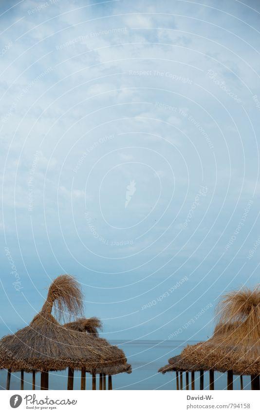 Textfreiraum | im Urlaub Reichtum Freude harmonisch Erholung ruhig Meditation Kur Schwimmen & Baden Ferien & Urlaub & Reisen Tourismus Abenteuer Ferne Freiheit