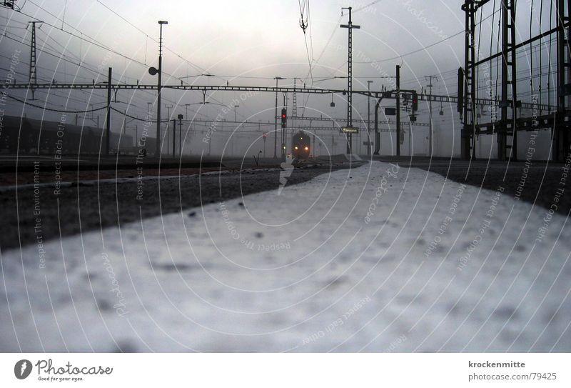 ZUGrunde kommen Sargans Eisenbahn Einfahrt Schweiz kalt Winter Froschperspektive Elektrizität Verkehr Gleise Nebel Morgen Station Bahnsteig Bahnfahren