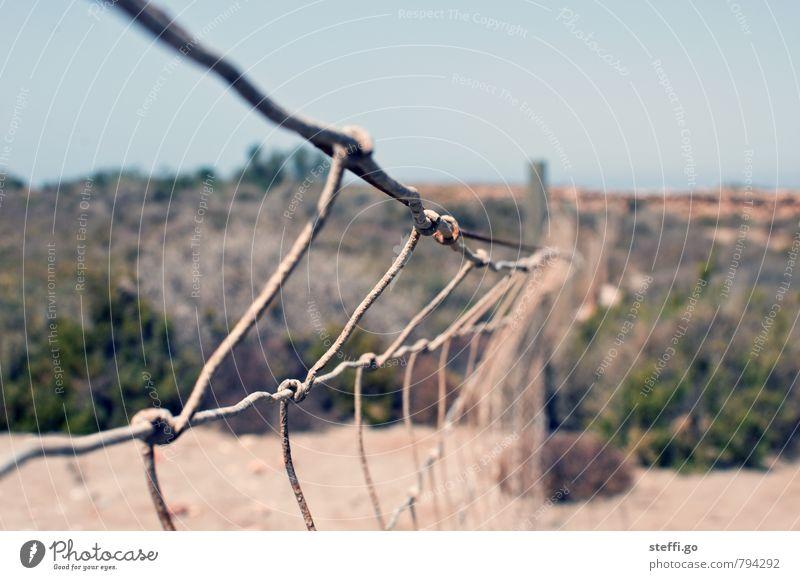 bis zur Grenze Ausflug Abenteuer Ferne Freiheit Landschaft Wärme Dürre Wüste Zaun alt bedrohlich Unendlichkeit Optimismus Kraft Willensstärke Macht Tatkraft