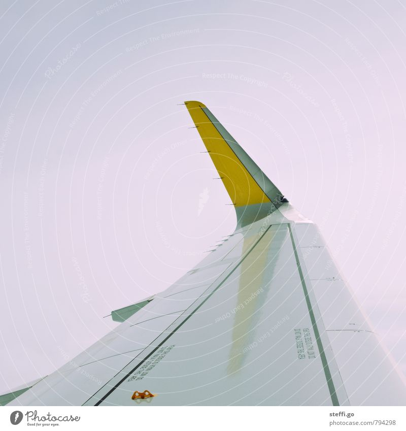 AGP- HAM Ferien & Urlaub & Reisen Tourismus Ausflug Abenteuer Ferne Freiheit Sommerurlaub Verkehr Luftverkehr Flugzeug Passagierflugzeug im Flugzeug