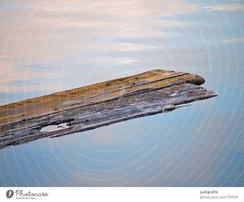 Oberflächen Natur Wasser alt Himmel blau ruhig Holz See braun kaputt liegen Spiegel verfallen Holzbrett Teich Material