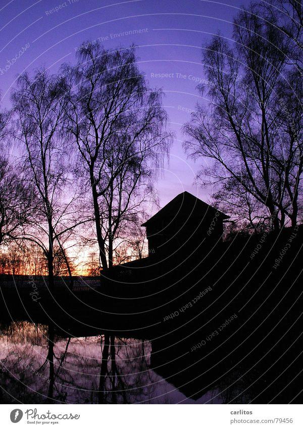 51°38'06.71'' 9°53'17.99'' Natur Wasser Himmel Baum Sonne blau dunkel Herbst See Architektur Teich Birke Silo Fototechnik