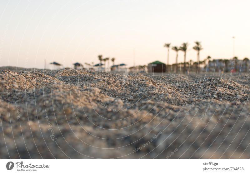 abends am Strand Ferien & Urlaub & Reisen Tourismus Ausflug Abenteuer Ferne Freiheit Sommer Sommerurlaub Sonne Landschaft Sand Palme Dorf Menschenleer Haus