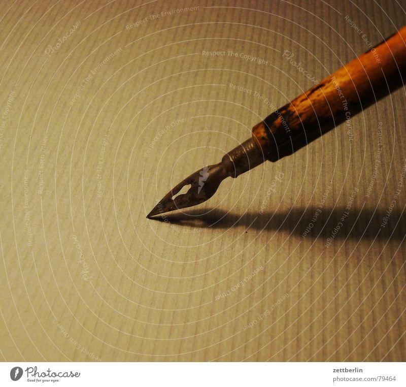 Feder Schreibfeder Schwan Kalligraphie liniert Kunst Linie Strukturen & Formen Kunsthandwerk federzeichnung Grafik u. Illustration schraffur zeichenfeder redis