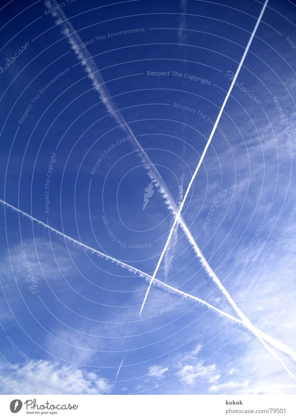 irgendwo kreuzten sich unsere Wege Himmel Natur blau Ferien & Urlaub & Reisen Sonne Sommer Winter Freude Wolken Herbst Freiheit Wege & Pfade Glück Luft hell