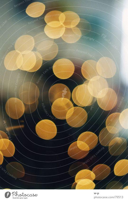 Lichterglanz Weihnachten & Advent Baum Winter Beleuchtung glänzend Tanne Lichtspiel Reaktionen u. Effekte Dezember Nadelbaum schemenhaft Lichterkette