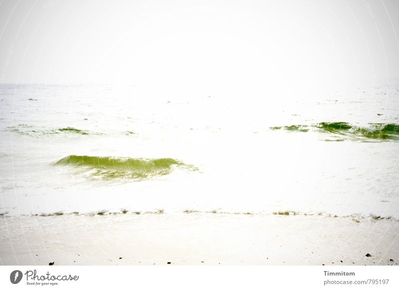 Gelegentlich...so... Ferien & Urlaub & Reisen Sommer Meer Umwelt Natur Urelemente Wasser Himmel Sonne Sonnenlicht Schönes Wetter Dänemark ästhetisch einfach