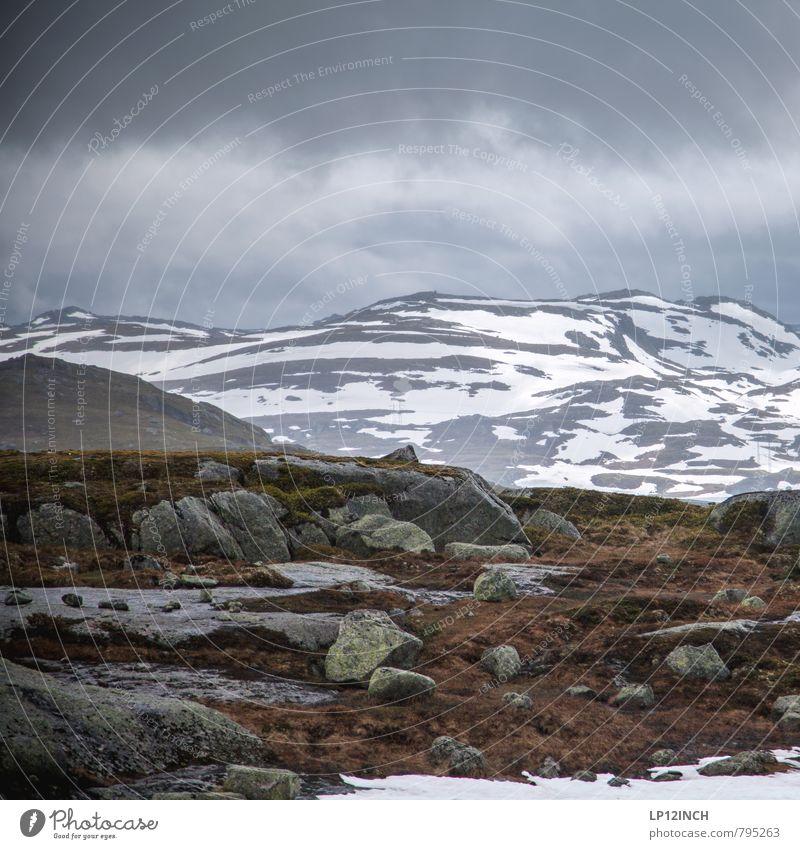 N O R W A Y - Stones - XXII Umwelt Natur Landschaft Tier Wolken schlechtes Wetter Gras Berge u. Gebirge Norwegen wandern dunkel gigantisch Abenteuer Einsamkeit