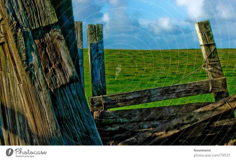 Old fence Horizont schäbig grün Wolken Gras old plank horizon worn Holzbrett alt