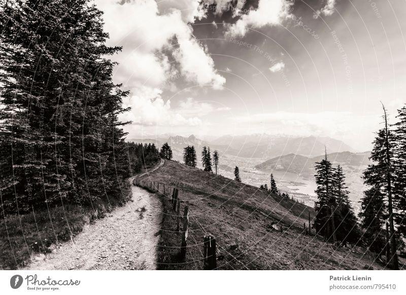Wildspitz Wellness Wohlgefühl Zufriedenheit Ferien & Urlaub & Reisen Tourismus Ausflug Abenteuer Ferne Freiheit Sightseeing Expedition Sommer Berge u. Gebirge