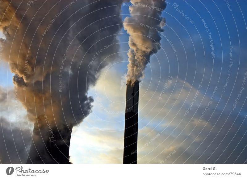 abdampfen gehen Nebel Umwelt Industrie Energiewirtschaft Elektrizität Zukunft Technik & Technologie Fabrik Wissenschaften Rauch Umweltverschmutzung Wasserdampf Stromkraftwerke Steckdose Hochspannungsleitung