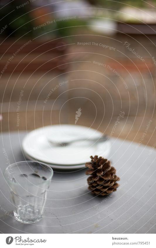 party vorbei. Pflanze Leben Garten Park Häusliches Leben Glas Glas Ausflug Ernährung Tisch Stuhl Teller Abendessen Mittagessen Gabel Büffet