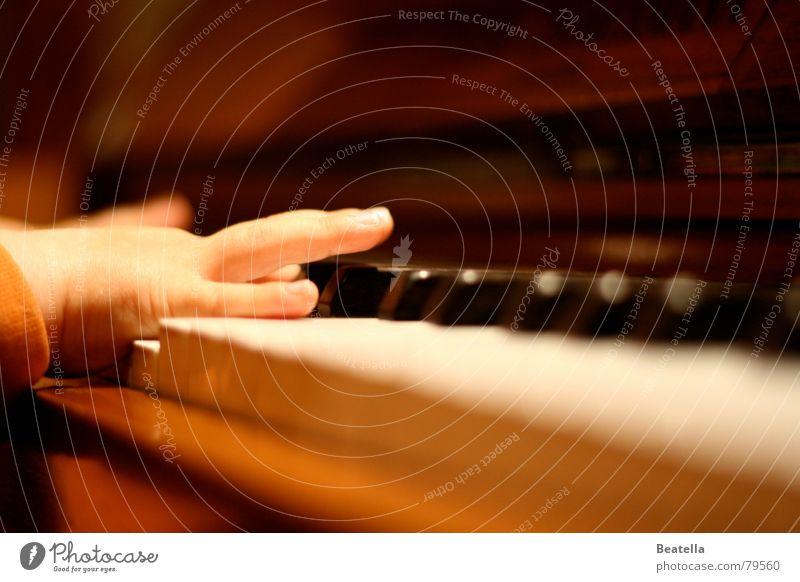 Früh übt sich ... Kind Hand Freude Musik Konzert Klavier Kleinkind Ton Klang üben Tasteninstrumente Musikinstrument Klavierkonzert