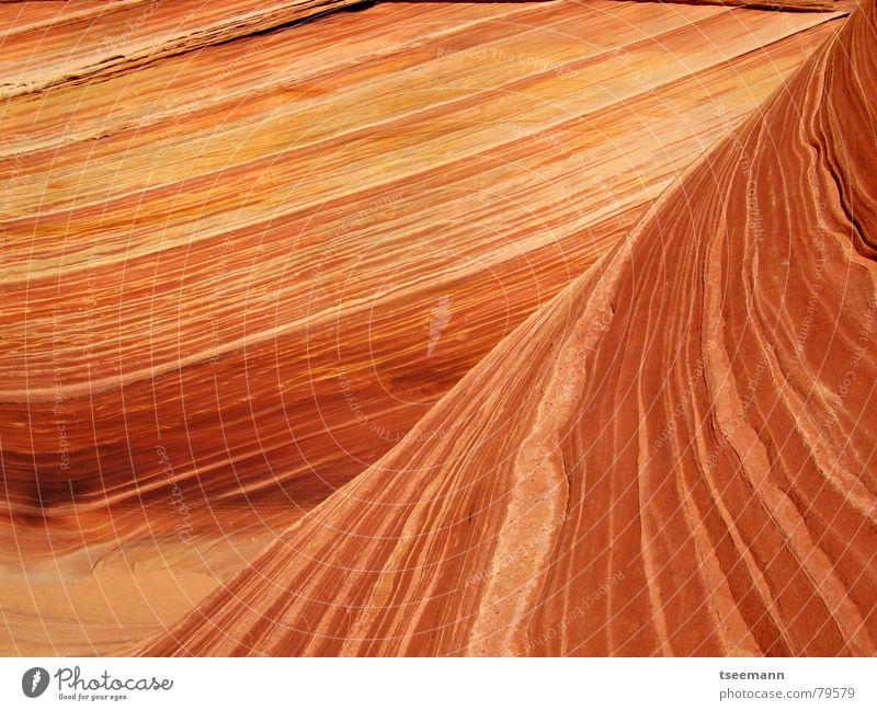 The Wave IV Wellen Berge u. Gebirge Erde Sand Schlucht Stein gelb orange rot Sandstein Old Paria USA Marmor pattern stone marbel structure red wave sandstone