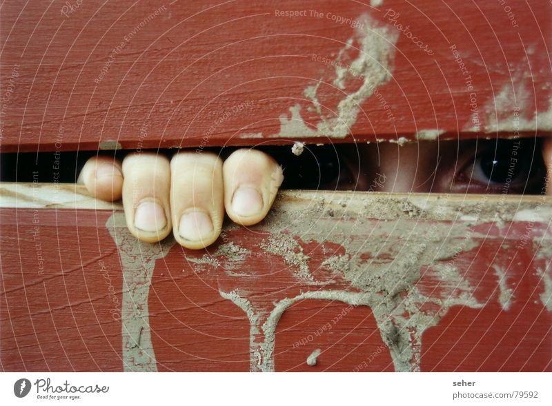 seh dich .. rot Auge Gefühle Holz Angst dreckig Finger beobachten Holzbrett gefangen Versteck Schlitz