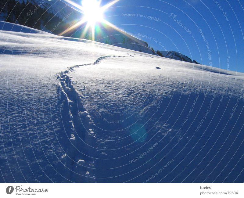 schneeblau Natur Himmel Sonne Sommer Winter Ferien & Urlaub & Reisen Wolken kalt Schnee Berge u. Gebirge Landschaft Eis hell Spuren Alpen