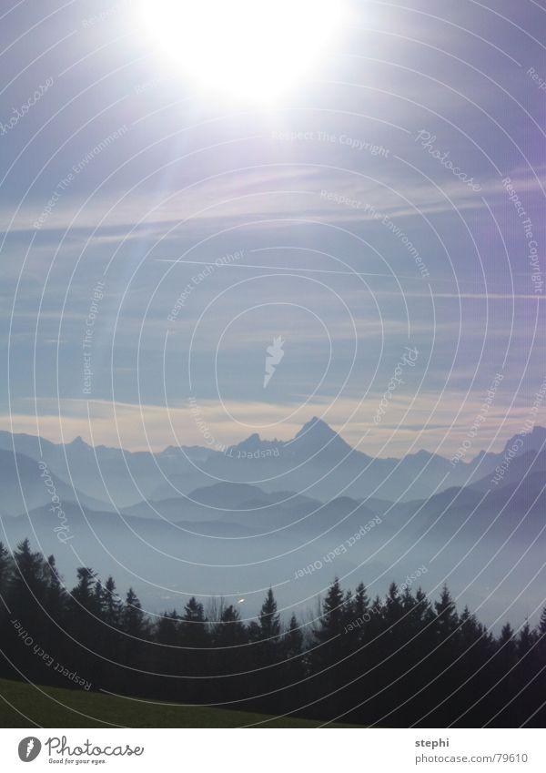 sommer in den bergen Wiese Nebel Wolken Sommer Physik schön Sonne Außenaufnahme Österreich Berge u. Gebirge Himmel hell Wärme Freiheit