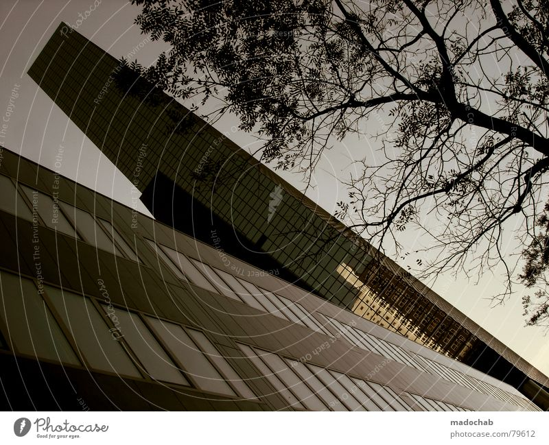 STILL ROTTERDAM Himmel Stadt blau Wolken Haus Fenster Leben Architektur Gebäude Freiheit fliegen oben Arbeit & Erwerbstätigkeit Wohnung Design Wetter