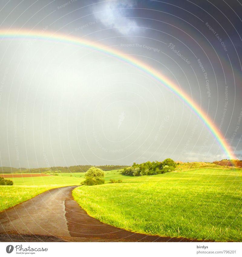 Lichttunnel Himmel Natur Sommer Landschaft Straße Wiese Herbst Wege & Pfade Frühling Religion & Glaube außergewöhnlich leuchten Idylle Energie ästhetisch