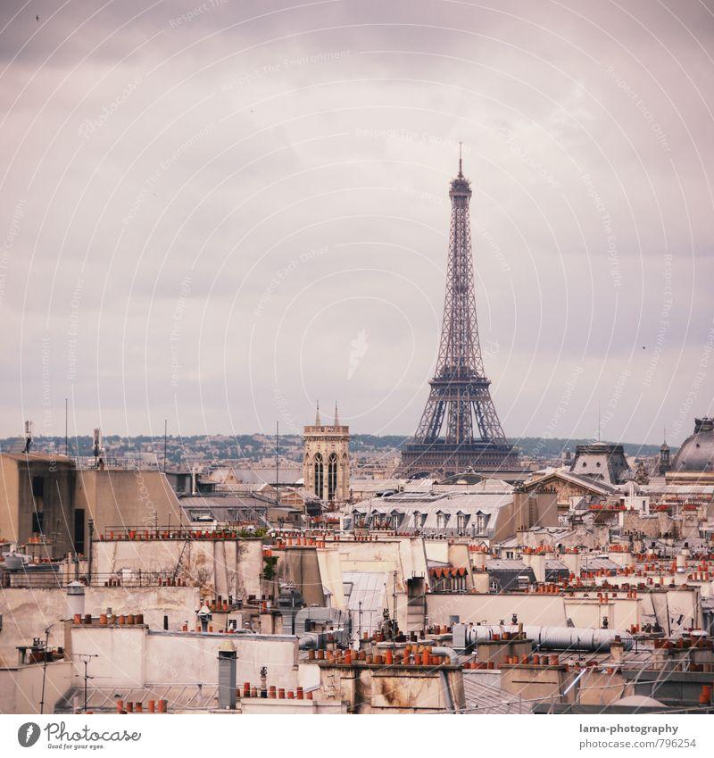 Über den Dächern von Paris Ferien & Urlaub & Reisen Stadt Haus Architektur Gebäude Tourismus Europa Dach violett Bauwerk Stadtzentrum Frankreich Wahrzeichen