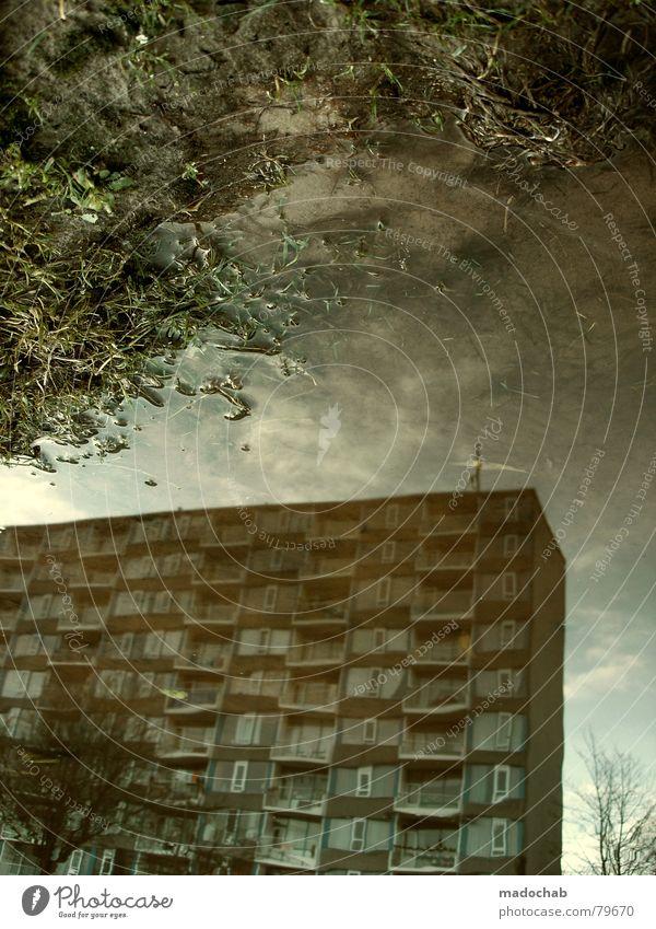 ATLANTIS II Pfütze wirklich Nebel nass Herbst Haus Hochhaus Gebäude Material Fenster live Block Beton Etage trist dunkel Leidenschaft Spiegel Vermieter Mieter