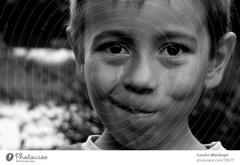 Spitzbübisch. Kind Sommer Auge Junge Mund Nase süß Ohr Spitze Schüler frech Neigung Schulkind Verschmitzt Segelohr