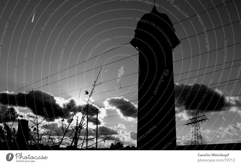 Phallussymbol. Wolken dramatisch Sträucher Flugzeug Kondensstreifen Licht Winter Strommast Gesellschaft (Soziologie) schwarz grau Lichteinfall verdunkeln kalt