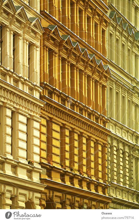 Altbau Ocker Gipsmörtel Haus Gebäude Fassade Stuck Putz Wohnung Fenster Prenzlauer Berg Farbton Anstrich Bauwerk historisch wohngebäude stuckverzierung Farbe