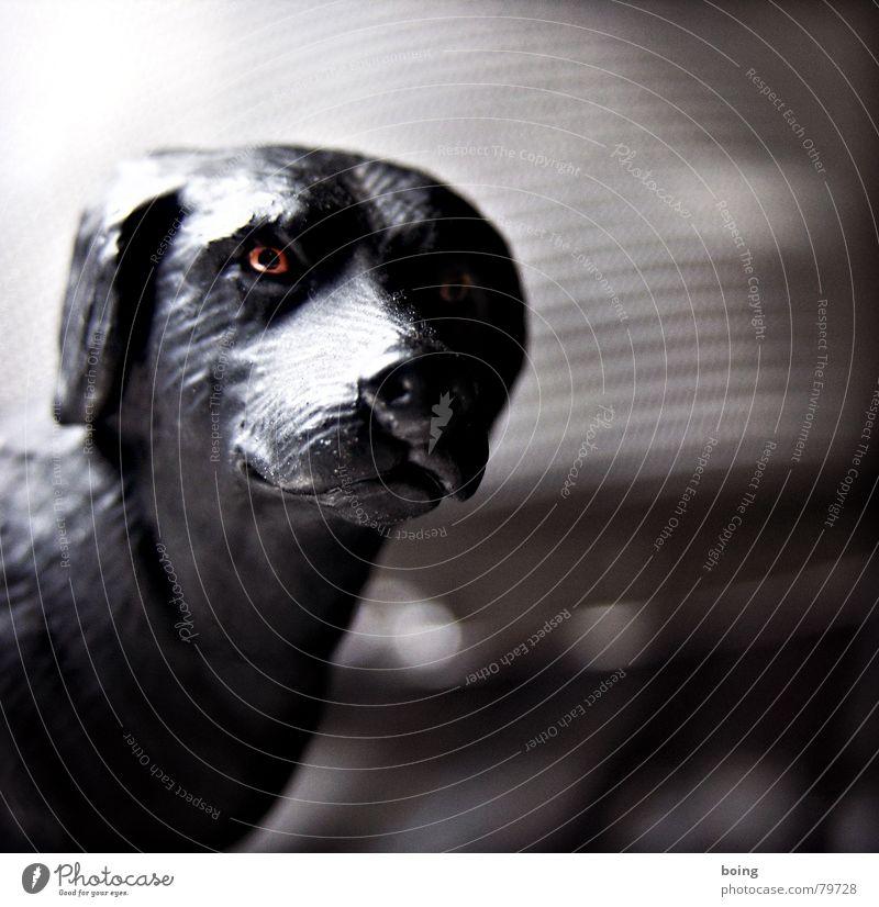 Wer sich zu sehr auf etwas einläßt, verliert sich selbst Hund warten Spielzeug Säugetier Figur Jagdhund Haushund Gassi gehen Hirtenhund Tierheim Hundemarke