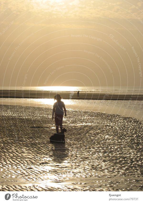 Sunset Wattenmeer See Sonnenuntergang Meer Strand Küste Mensch Einsamkeit mehrere Abend Badestelle orange Nordsee Wasser Abenddämmerung sehr viele an der küste