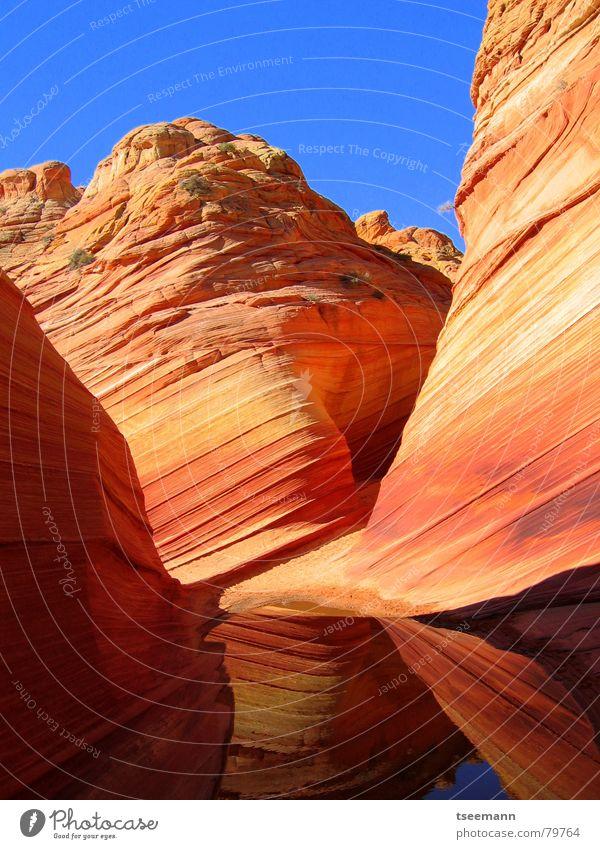 The Wave II Wasser rot gelb Stein Sand orange Wellen Erde USA Schnur Schlucht Mineralien Marmor Sandstein Old Paria