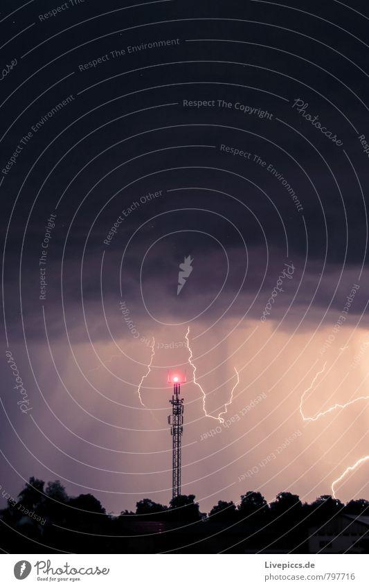 flash...ahaaaa Telekommunikation Umwelt Natur Landschaft Himmel Wolken Gewitterwolken Nachthimmel Sommer Unwetter Wind Blitze Pflanze Baum Wald leuchten toben